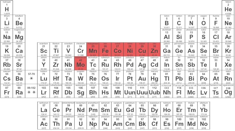periodic_table_of_elements_BW_T